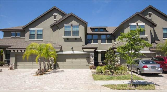 4905 Wandering Way, Wesley Chapel, FL 33544 (MLS #T3235748) :: McConnell and Associates