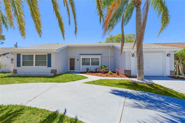 3528 Margate Drive, Holiday, FL 34691 (MLS #T3235780) :: Premium Properties Real Estate Services
