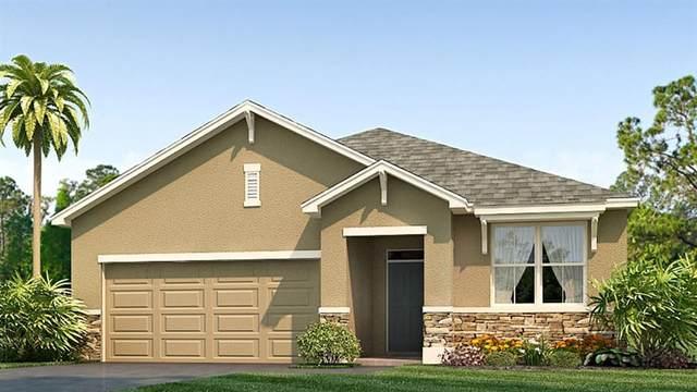 12705 Dusty Trail Drive, Sarasota, FL 34238 (MLS #T3235794) :: Griffin Group