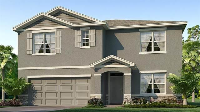 12717 Dusty Trail Drive, Sarasota, FL 34238 (MLS #T3235797) :: Griffin Group