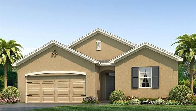 2988 NE 42ND Road, Ocala, FL 34470 (MLS #T3235800) :: Premium Properties Real Estate Services