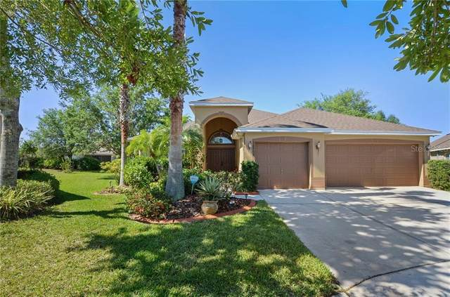 16303 Bridgelawn Avenue, Lithia, FL 33547 (MLS #T3235824) :: Premium Properties Real Estate Services