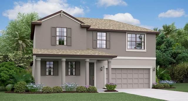 24941 Lambrusco Loop, Lutz, FL 33559 (MLS #T3235890) :: Premier Home Experts