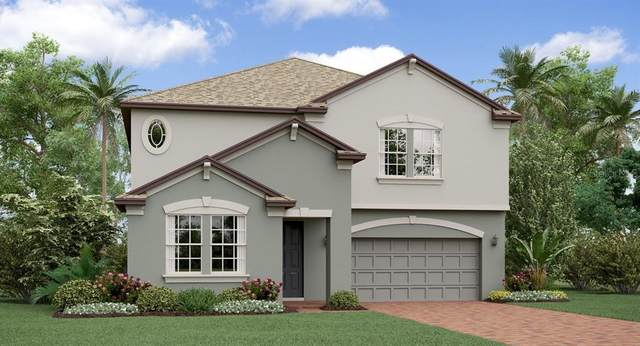 24940 Lambrusco Loop, Lutz, FL 33559 (MLS #T3235894) :: Premier Home Experts