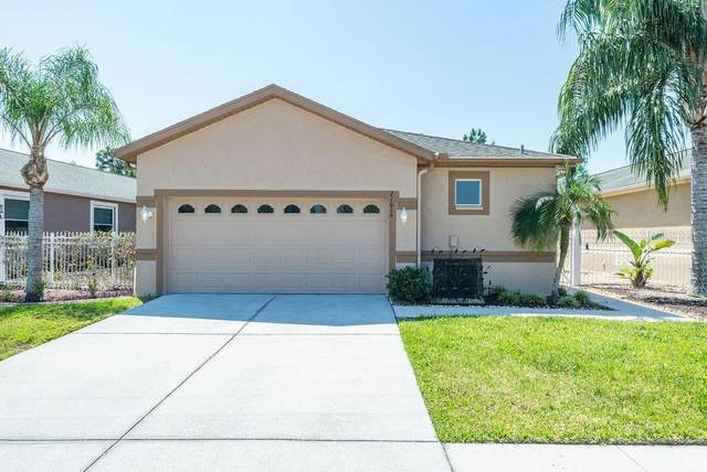 21014 Diamonte Drive, Land O Lakes, FL 34637 (MLS #T3235926) :: Team Bohannon Keller Williams, Tampa Properties