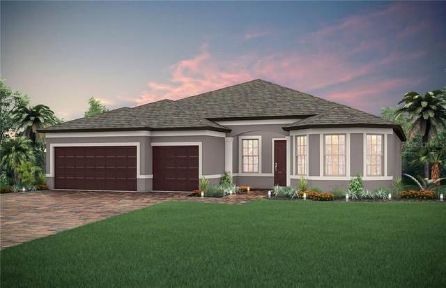 4777 Archboard Place, Land O Lakes, FL 34638 (MLS #T3235929) :: Cartwright Realty