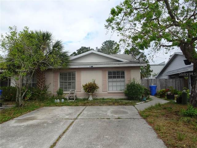 874 Burlwood Street, Brandon, FL 33511 (MLS #T3235943) :: Burwell Real Estate