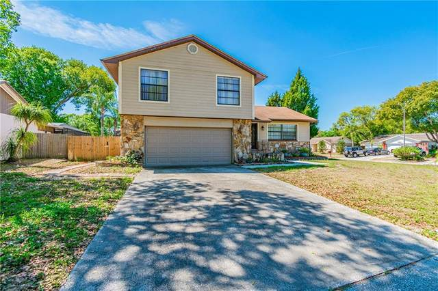 5516 Raven Court, Tampa, FL 33625 (MLS #T3235952) :: Gate Arty & the Group - Keller Williams Realty Smart