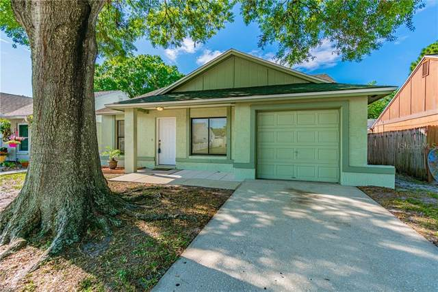 12310 Cloverstone Drive, Tampa, FL 33624 (MLS #T3235958) :: Bustamante Real Estate