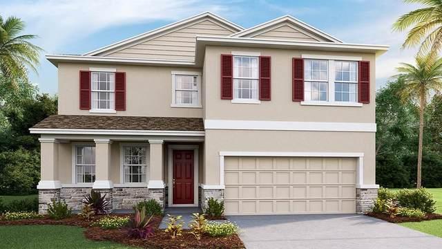 2808 Living Coral Drive, Odessa, FL 33556 (MLS #T3235967) :: Team Borham at Keller Williams Realty