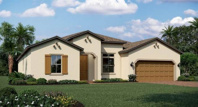 1835 Southern Red Oak Court, Ocoee, FL 34761 (MLS #T3235969) :: The Duncan Duo Team