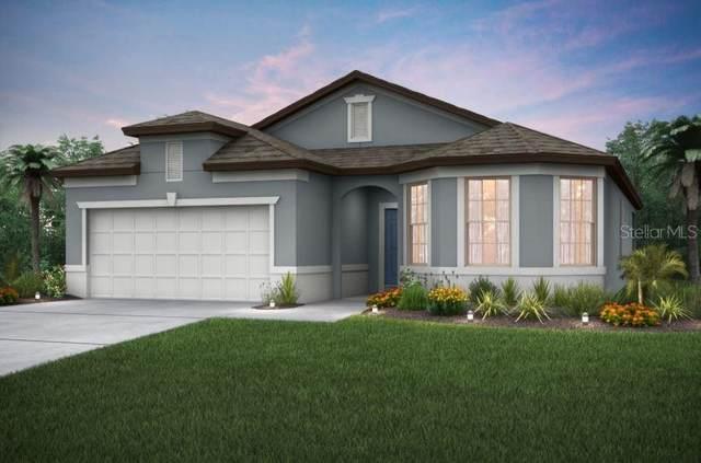 10302 Wine Press Avenue, Riverview, FL 33578 (MLS #T3235970) :: Dalton Wade Real Estate Group