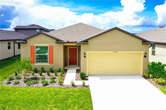 9125 Grant Line Lane, Riverview, FL 33578 (MLS #T3235985) :: Team Bohannon Keller Williams, Tampa Properties