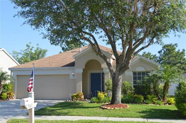 29811 Morningmist Drive, Wesley Chapel, FL 33543 (MLS #T3235991) :: The Duncan Duo Team