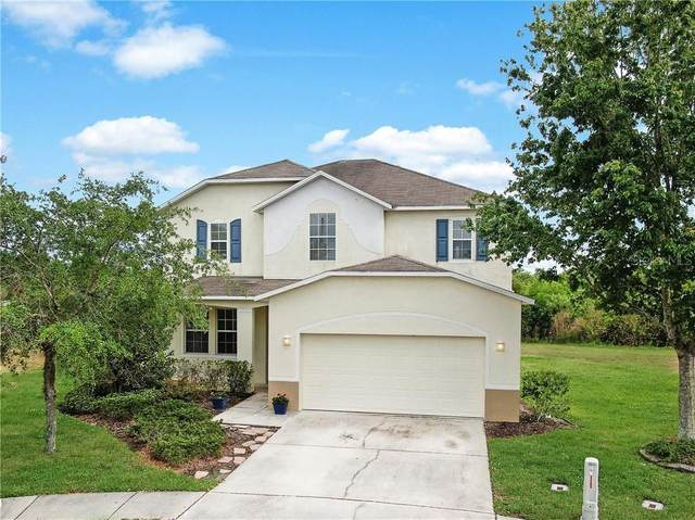 32206 Brookstone Drive, Wesley Chapel, FL 33545 (MLS #T3236007) :: Premium Properties Real Estate Services