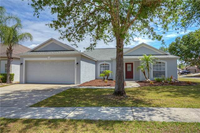 909 Pyrite Court, Valrico, FL 33594 (MLS #T3236026) :: Dalton Wade Real Estate Group