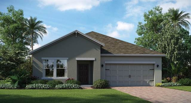 4403 Seven Canyons Drive, Kissimmee, FL 34746 (MLS #T3236032) :: Carmena and Associates Realty Group