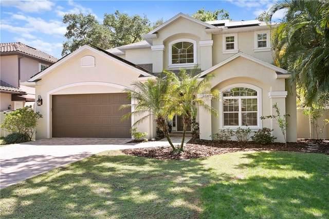 4304 W Zelar Street, Tampa, FL 33629 (MLS #T3236035) :: Team Bohannon Keller Williams, Tampa Properties