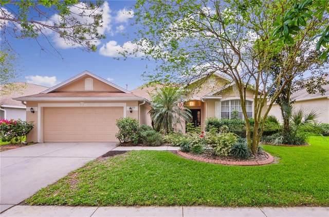 15120 Shearcrest Drive, Lithia, FL 33547 (MLS #T3236046) :: Premium Properties Real Estate Services