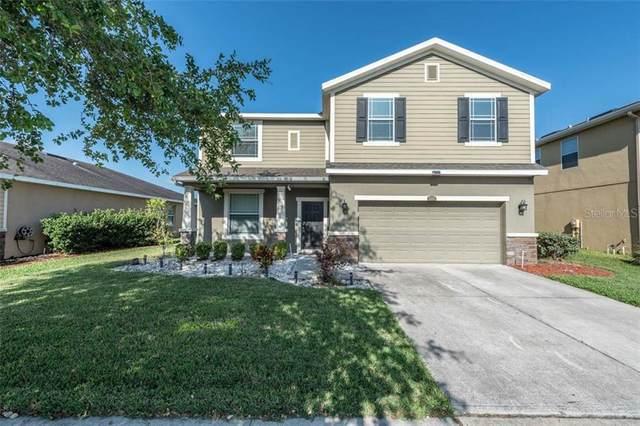 12222 Fairlawn Drive, Riverview, FL 33579 (MLS #T3236065) :: Premium Properties Real Estate Services