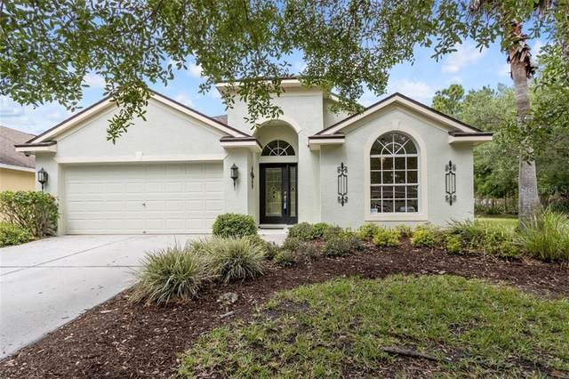 18626 Le Dauphine Place, Lutz, FL 33558 (MLS #T3236095) :: The Price Group