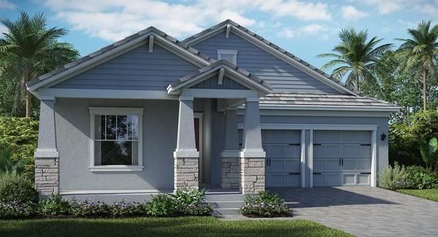 11957 Charades Street, Orlando, FL 32832 (MLS #T3236108) :: Dalton Wade Real Estate Group