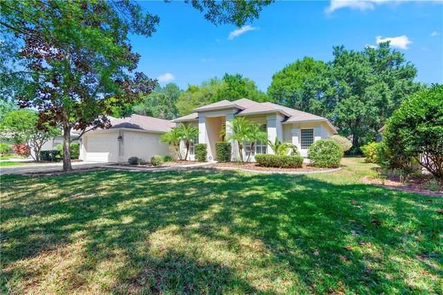 4924 Willow Ridge Terrace, Valrico, FL 33596 (MLS #T3236122) :: Dalton Wade Real Estate Group