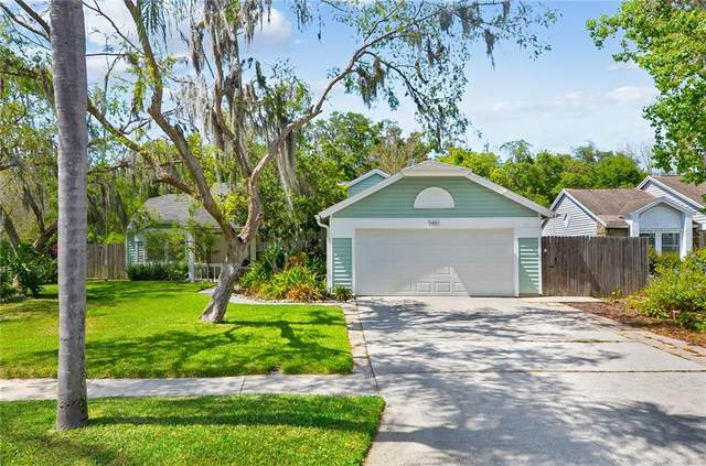 7451 Swan Lake Drive, New Port Richey, FL 34655 (MLS #T3236149) :: Your Florida House Team