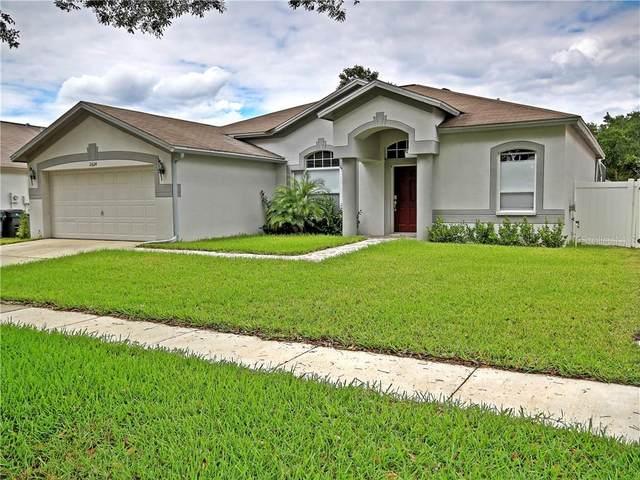 2624 Allwood Avenue, Valrico, FL 33596 (MLS #T3236152) :: Premium Properties Real Estate Services