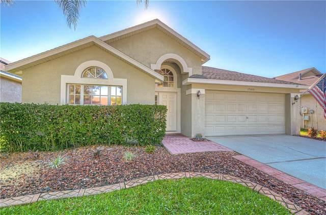15430 Osprey Glen Drive, Lithia, FL 33547 (MLS #T3236174) :: Premium Properties Real Estate Services