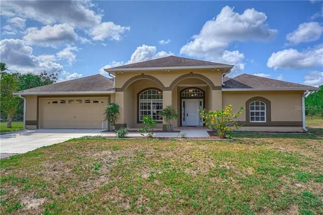 19027 Red Bird Lane, Lithia, FL 33547 (MLS #T3236184) :: Premium Properties Real Estate Services