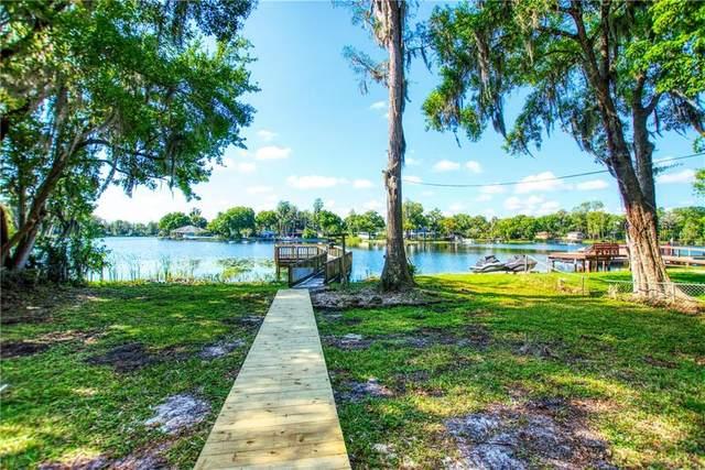 5640 Half Moon Lake Road, Tampa, FL 33625 (MLS #T3236217) :: The Duncan Duo Team