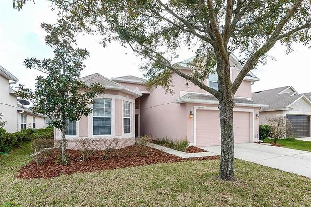 34440 Windknob Court, Wesley Chapel, FL 33545 (MLS #T3236226) :: Premium Properties Real Estate Services