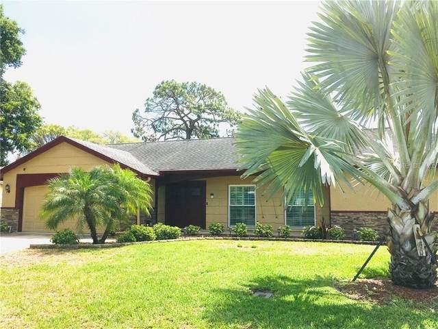 12930 Pebble Beach Circle, Hudson, FL 34667 (MLS #T3236243) :: Team Bohannon Keller Williams, Tampa Properties