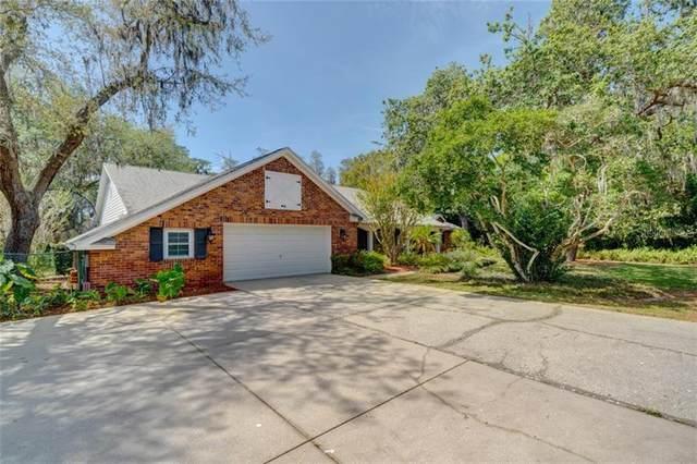 16710 Hutchison Road, Odessa, FL 33556 (MLS #T3236291) :: Zarghami Group