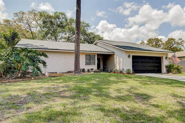 2564 Knotty Pine Way, Clearwater, FL 33761 (MLS #T3236351) :: Lock & Key Realty