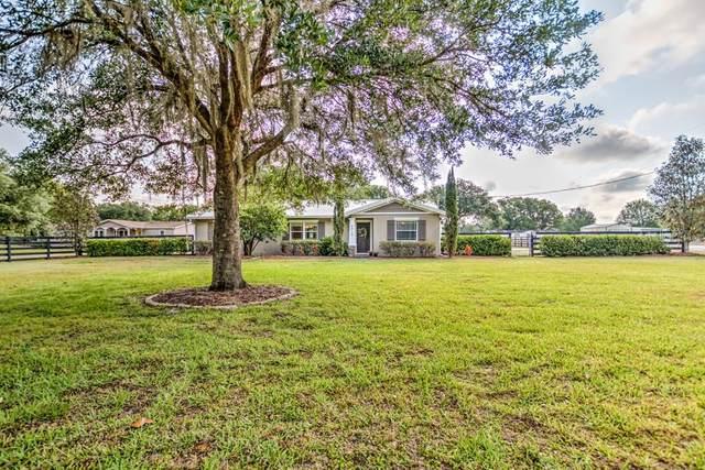 4610 Cooper Road, Plant City, FL 33565 (MLS #T3236363) :: Team Bohannon Keller Williams, Tampa Properties