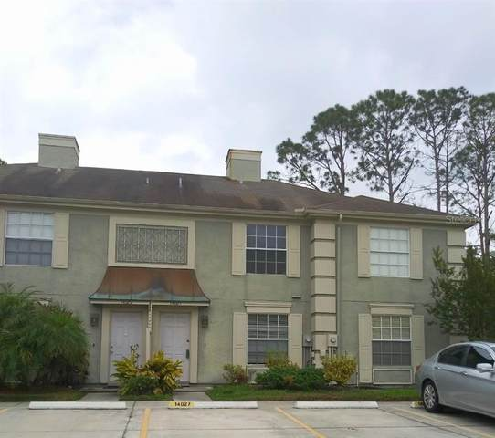 14027 Notreville Way, Tampa, FL 33624 (MLS #T3236440) :: The Duncan Duo Team