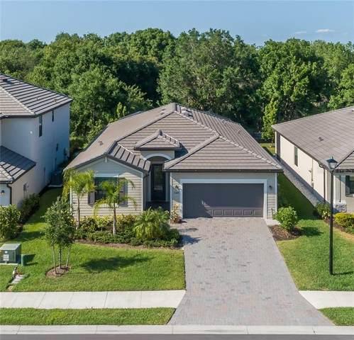 11429 Sweetgrass Drive, Bradenton, FL 34212 (MLS #T3236449) :: Zarghami Group