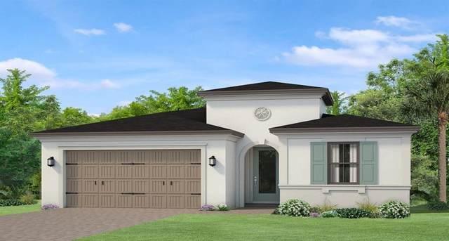 4980 Tivoli Drive, Wesley Chapel, FL 33543 (MLS #T3236479) :: The Duncan Duo Team