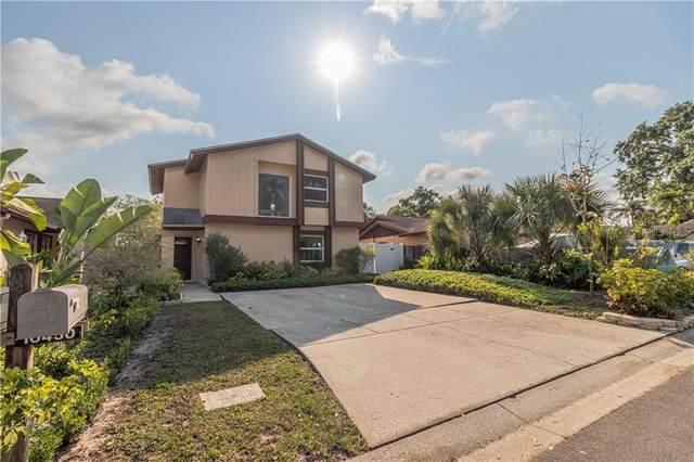 10450 Rosemount Drive, Tampa, FL 33624 (MLS #T3236521) :: Lock & Key Realty