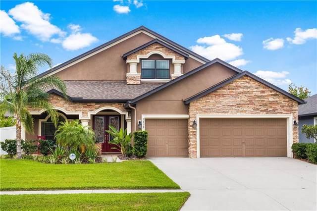 2808 Colewood Lane, Dover, FL 33527 (MLS #T3236599) :: Medway Realty