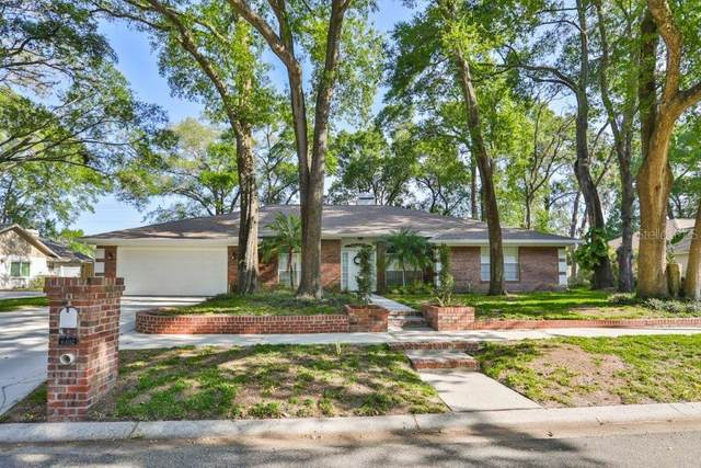 6402 N Queensway Drive, Temple Terrace, FL 33617 (MLS #T3236604) :: Griffin Group