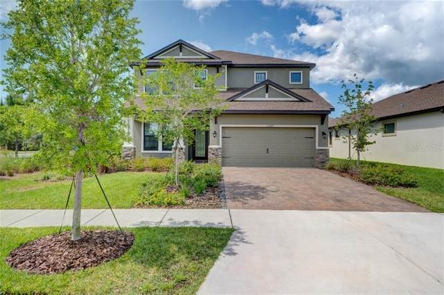 12307 Fitzroy Street, Odessa, FL 33556 (MLS #T3236608) :: Team Bohannon Keller Williams, Tampa Properties