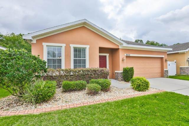 8430 Tidal Breeze Drive, Riverview, FL 33569 (MLS #T3236610) :: The Duncan Duo Team