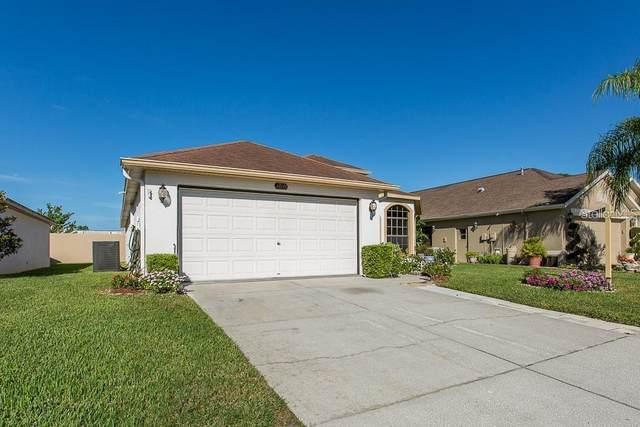 13733 Leroux Drive, Hudson, FL 34669 (MLS #T3236676) :: Armel Real Estate