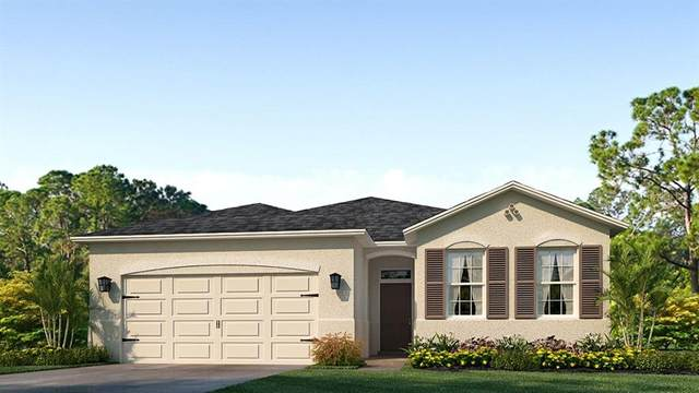 8032 Wheat Stone Drive, Zephyrhills, FL 33540 (MLS #T3236780) :: The Duncan Duo Team