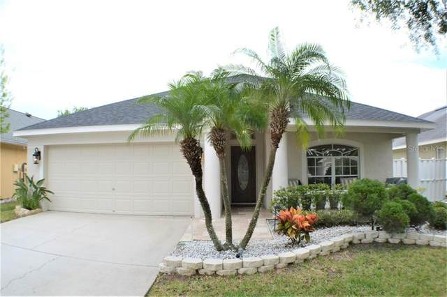 4512 Perdita Lane, Lutz, FL 33558 (MLS #T3236883) :: Delgado Home Team at Keller Williams