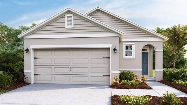 6208 SW 89TH LANE Road, Ocala, FL 34476 (MLS #T3236941) :: Dalton Wade Real Estate Group