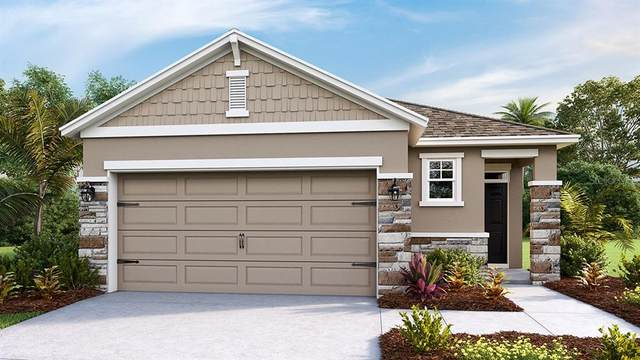 6318 SW 89TH LANE Road, Ocala, FL 34476 (MLS #T3236944) :: Dalton Wade Real Estate Group